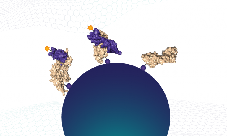 Biotinylated proteins (and bound SOMAmer reagents) are captured on streptavidin beads