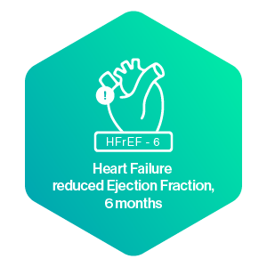 Heart Failure reduced Ejection Fraction 6 months